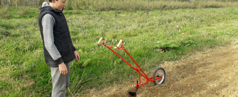 plantation de pomme de terre en vidéo