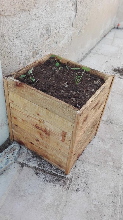 vidéo sur la construction d'une jardinier en palette.