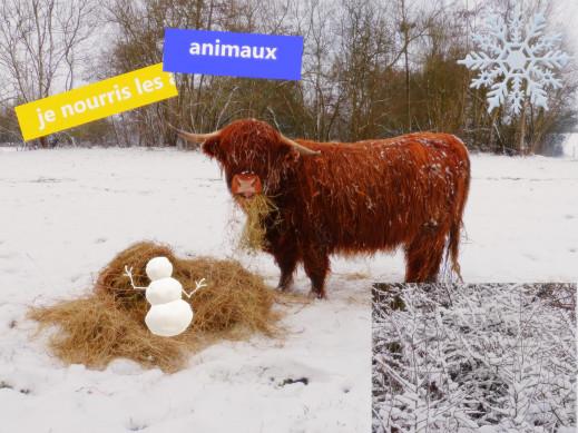 vidéo neige :)